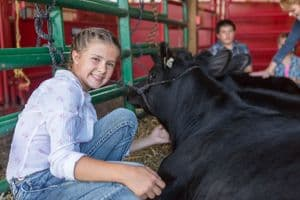 Young girl smiling next to calf